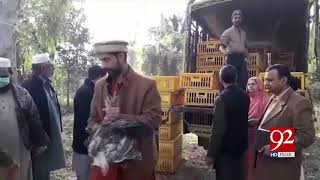 Livestock department begins distribution of hens under PM Imran Khan's vision | 4 Dec 2018