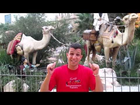 LES ALGERIENS EN TUNISIE : DZjoker الجزائريون في تونس
