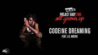 Kodak Black - Codeine Dreaming (feat. Lil Wayne) [Official Audio]