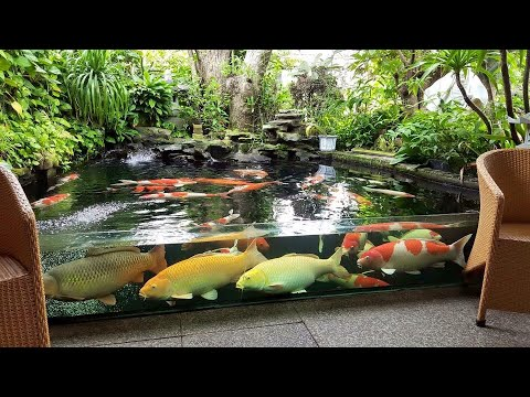Download thumbnail for Garden Designs | TOP 3 MOST ... on Backyard Koi Pond Designs id=95659