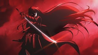 [AMV] Akame ga kill - Can't Go To Hell