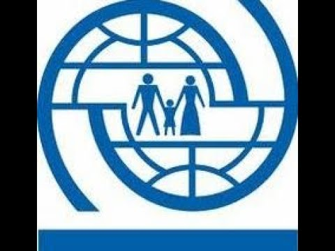 A11 - Uluslararası Göç Örgütü