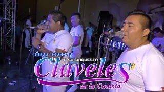 MALDITO LICOR...(D.R.) - LOS CLAVELES DE LA CUMBIA 2016 EN 4K - CUCALAMBE 20-03-2016