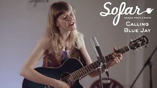 Calling Blue Jay - The Saltiest Sea | Sofar London