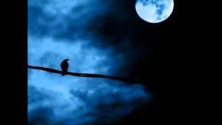 Czesław Niemen - Dobranoc