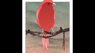 """Sing little birdie"" | Phoenix vid 5"
