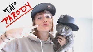 Big Sean – Bounce Back *CAT* PARODY