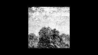 Norm Talley - Deep Consciousness (Ness Unconscious Rework)(clip)