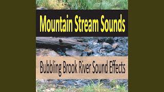 Gentle Flowing River Sound (No Music)