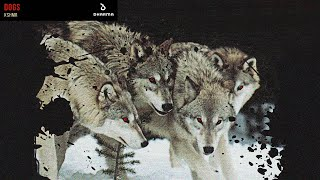KSHMR - Dogs (feat. Luciana) (HQ Download Link)