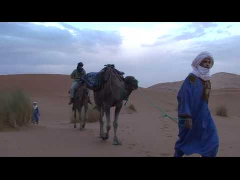 Camel Trek in the Sahara, HD