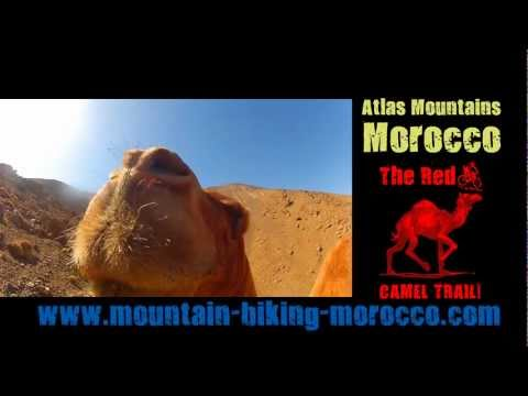 Single track  enduro mountain biking Morocco, Red Camel Trai