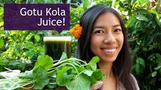How to Make Gotu Kola (Pennywort) Drink