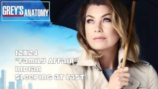 "Grey's Anatomy Soundtrack - ""Indian"" by Sleeping at Last (12x24)"