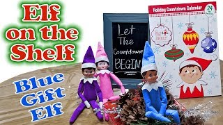 Purple & Pink Elf on the Shelf - Blue Gift Elf Brings Christmas Countdown Calendar! Day 9