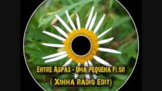Entre Aspas - Uma Pequena Flor (Xinha Radio Edit)