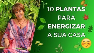 10 Plantas para Energizar Sua Casa!!