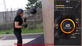 Tracking Shadowball Boxing with PIQ/Everlast AI punch sensor