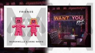 Want You x FRIENDS Mashup (Rynx, Marshmello, Miranda Glory, Anne Marie)