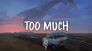 ZAYN - Too Much (Lyrics) ft. Timbaland