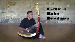 Escale à Bobo Dioulasso, Patrick Kersalé - Khmer harp / Harpe khmère
