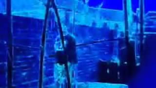 Reload (Radio Edit) [feat. Chip]