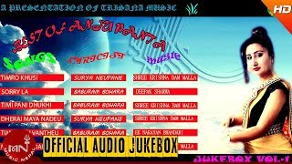 Best Of Anju Panta Songs Collection | Jukebox Vol - 1 | Trisana Music HD width=