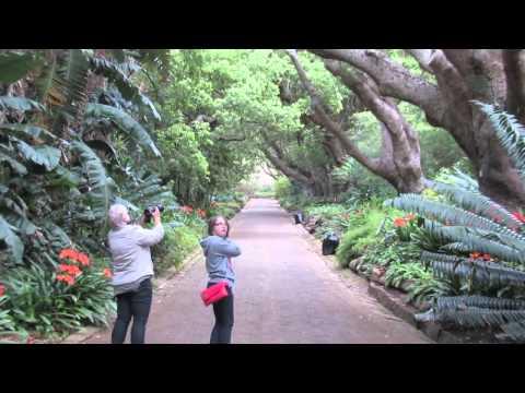 Africa & Dubai 2012 Highlights/Memories!