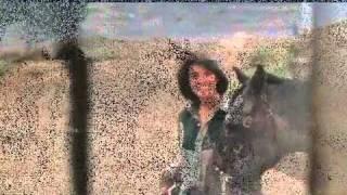 AMOR-Desert Hearts - Crazy For You