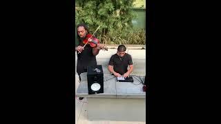 Violin Trap with DSharp