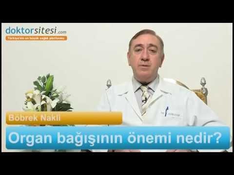 Prof. Dr. Alp Gürkan - Organ Bağışının Önemi Nedir