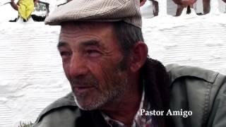 Pastor Amigo Eu Vou Contigo