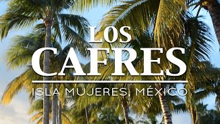 Los Cafres en Isla Mujeres, México - Reggae en PelaGatos