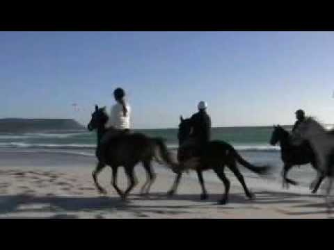 Noordhoek Horse Rides – Cape Peninsula, South Africa