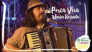 Porca Véia - Marca Borrada (Ao Vivo - Clip DVD)