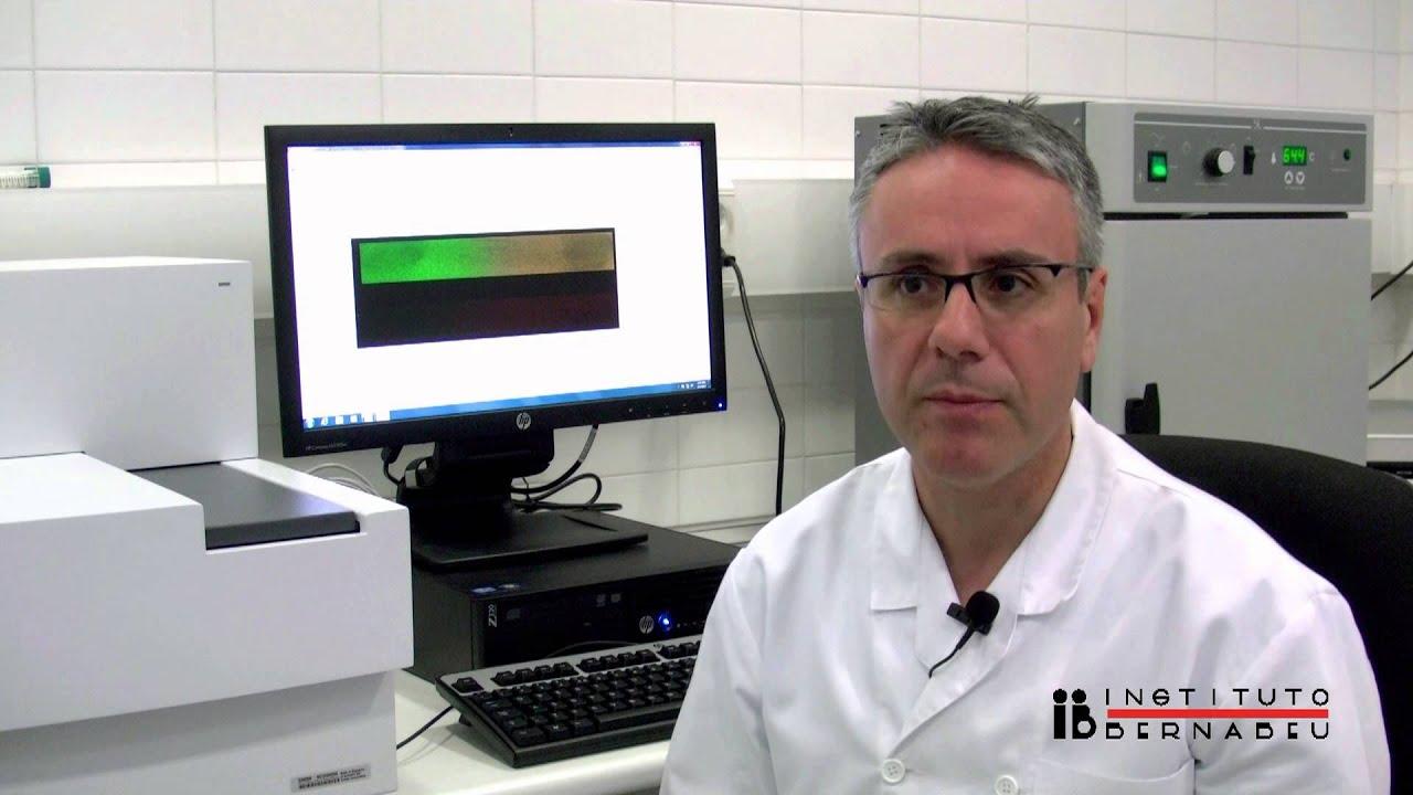 Array-CGH: Die Wunder des Embryos entdecken. Comprehensive Chromosome Screening (CCS)