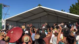 Collie Herb Man - Katchafire (Live in AKL)