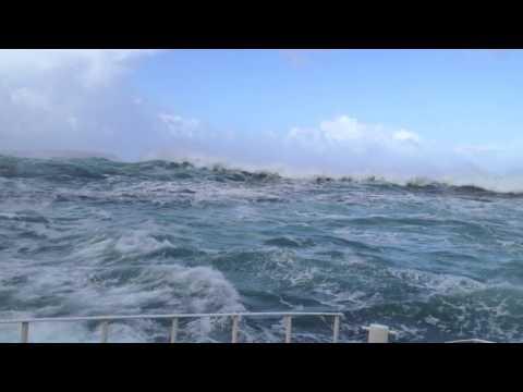 Seal Island, Hout Bay – Capetown / ケープタウン 強風荒海のアザラシ観光船