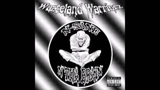 Wazteland Warriorz - N-sane N Tha Brain