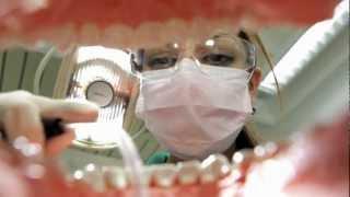 Zahnmedizinische/r Fachangestellte/r. Auch eine Ausbildung, die zu dir passen könnte.