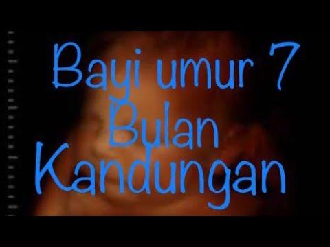 Download Video USG BAYI UMUR 7 BULAN DALAM KANDUNGAN.