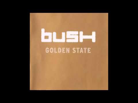 bush-inflatable-ryan-roymega