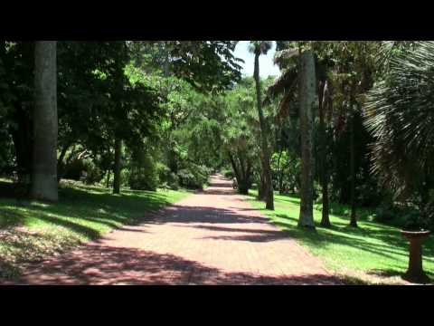 The Durban Botanic Gardens (South Africa)