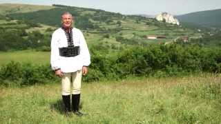 Nicolae Furdui Iancu - Din Poiana pana-n Vad