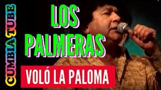 Los Palmeras - Voló la paloma