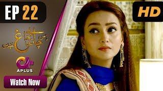 Drama | Is Chand Pe Dagh Nahin - Episode 22 | Aplus ᴴᴰ Dramas | Zarnish Khan, Firdous Jamal width=