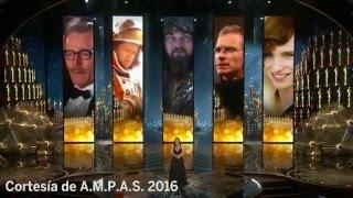 Discurso ambientalista de Leonardo DiCaprio - Premios Oscar 2016
