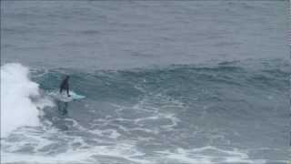 CHILEAN SURF DAY