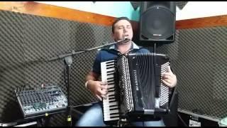 Sanfoneiro Para Festas - Fernandinho Do Acordeon