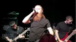 AMASS THE GRAVE - BUILT TO DIE -LIVE WITH CD DUB -
